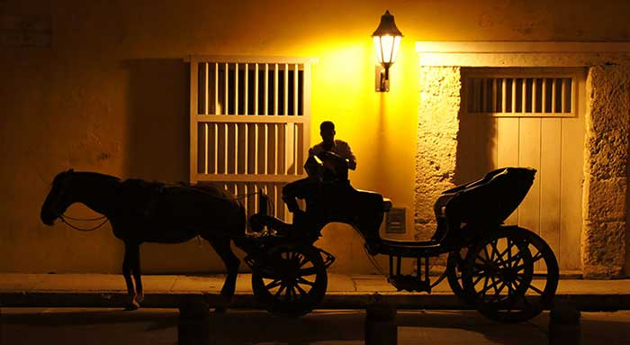 Horse and Carriage at night