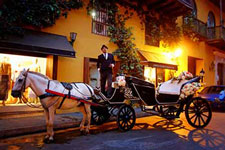 Horse Carriage For Weddings