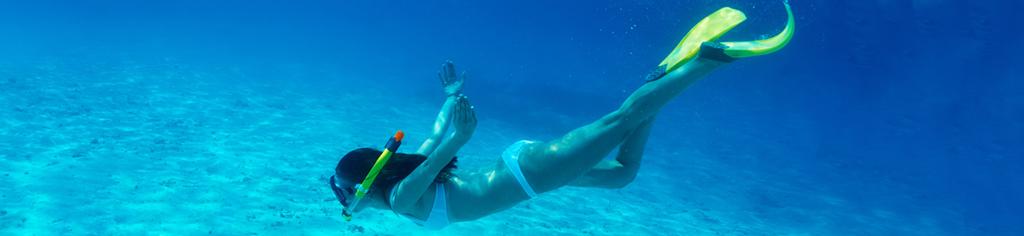 Snorkeling Rosario Islands