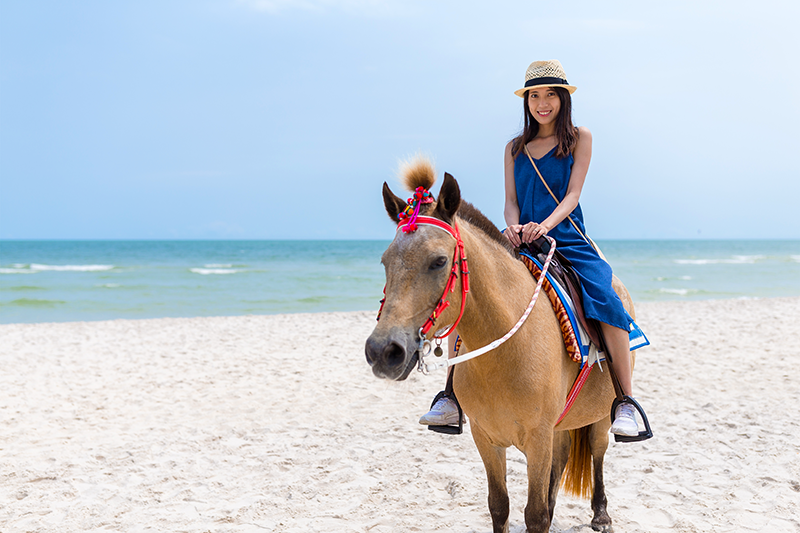 Horse Riding on the Beaches of Cartagena